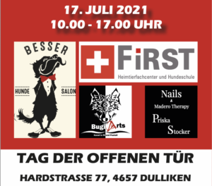 Read more about the article Tag der offenen Tür am 17. Juli 2021 in Dulliken